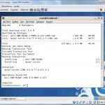 Montando un servidor web en CentOS 5.5- Parte II