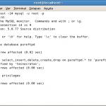 Montando un servidor web en CentOS 5.5-Parte V