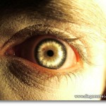 Efecto Ojo de Zombie con Photoshop