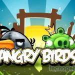 Empieza la guerra de los juegos sociales: Angry Birds en Google +
