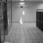 Videos reales de fantasmas