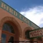 Buscadores de fantasmas en el teatro bridcage
