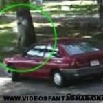 Vídeos de fantasmas y duendes