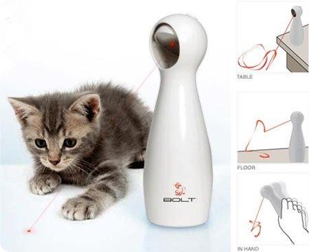 laser gatos