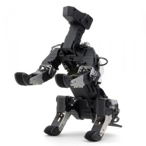 robot g-dog