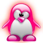 Un año con Linux ;-)