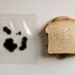 Bolsas para sandwichs con moho