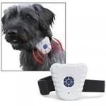 Stop Barking Collar, evita que tu perro ladre