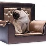 Sofá con Swarovski para tu mascota